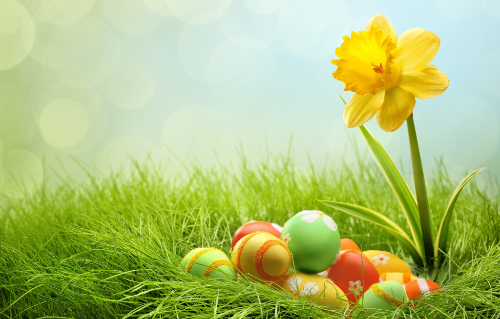 Holidays-Easter-Eggs-and-yellow-flower_