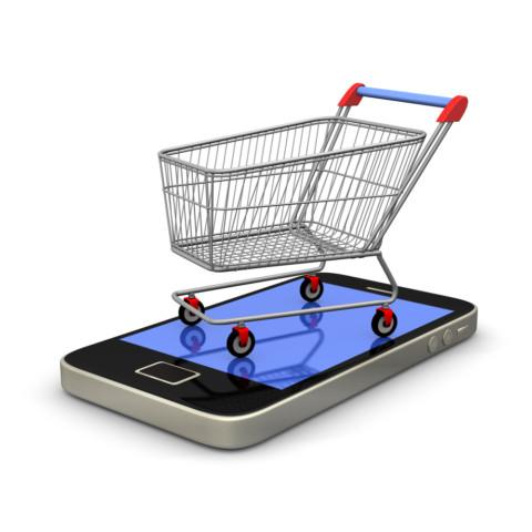E-Trgovina u Srbiji kao model poslovanja