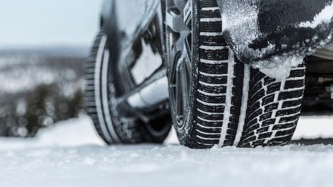 Zimske auto gume Nokian WR A4 inspirisane prirodom
